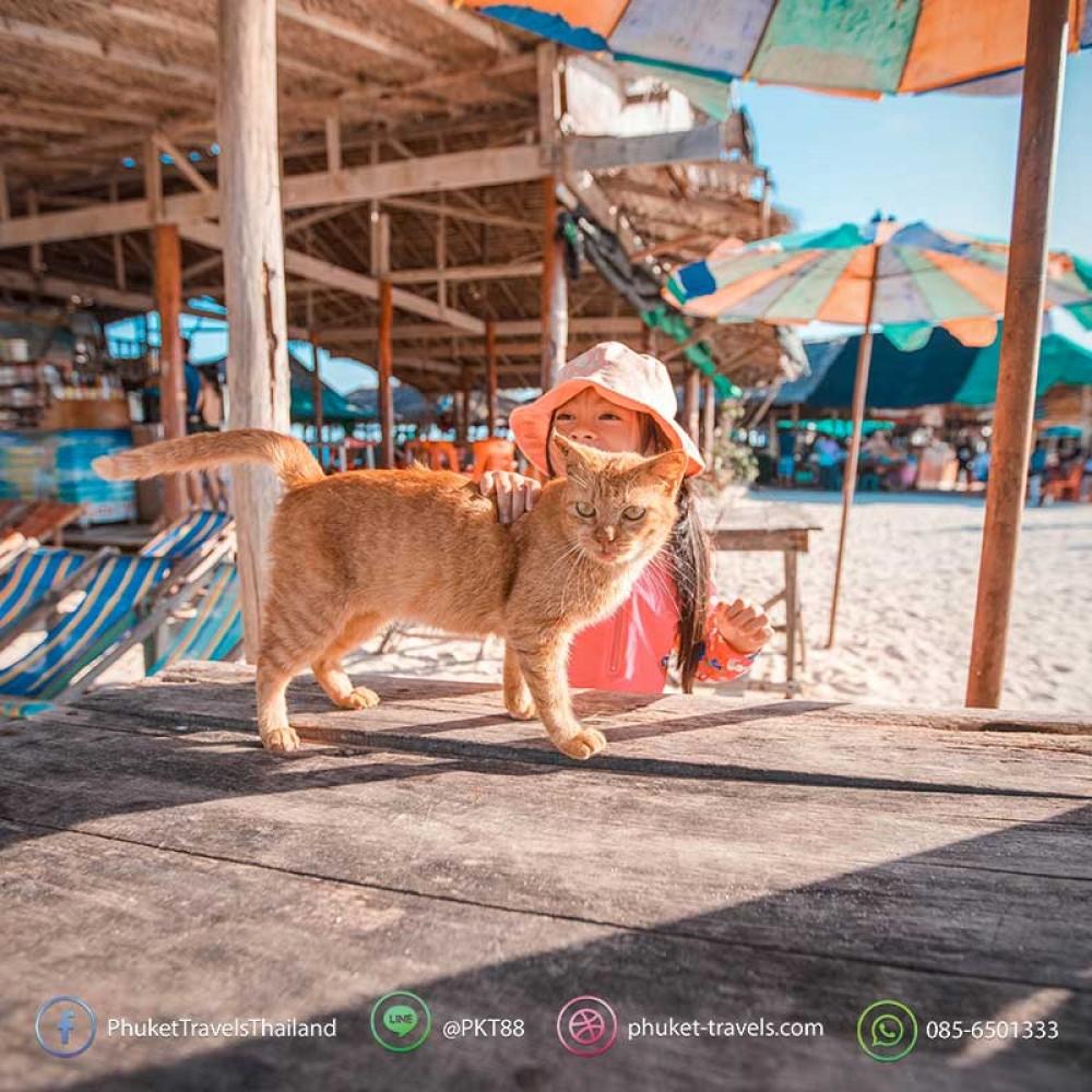 ทัวร์เกาะพีพี อ่าวปิเล๊ะ เกาะไข่