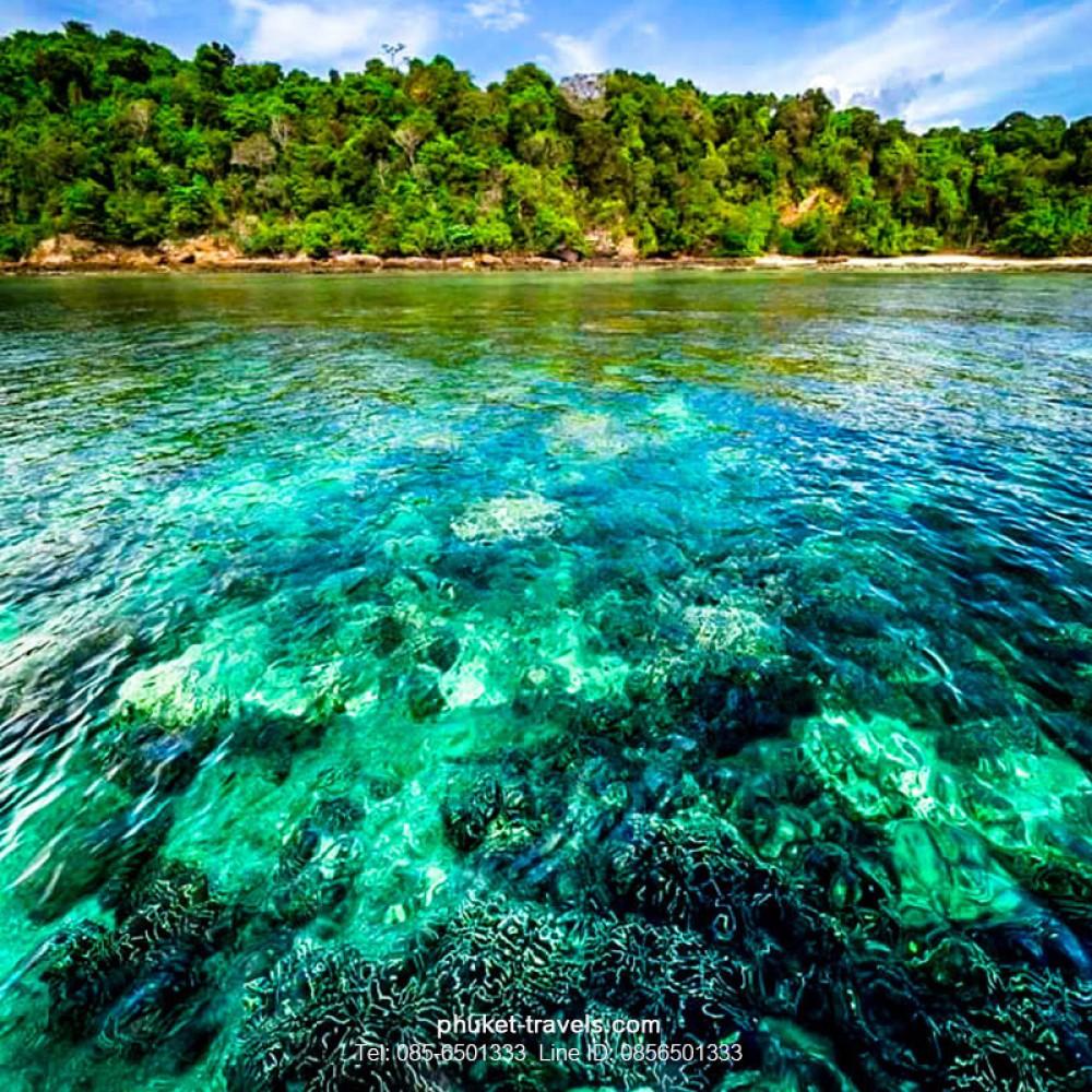 ทัวร์พีพี วิวพ้อย เกาะไม้ท่อน เกาะไข่